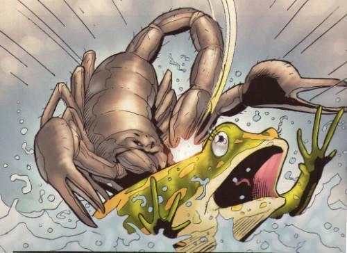 câu chuyện chú ếch và bọ cạp